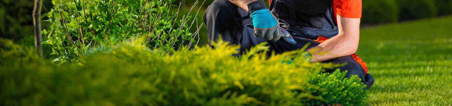 Manutenzione Giardini Milano E Provincia i 10 migliori giardinieri a milano